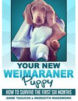 Weim puppy cover